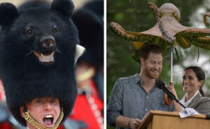 Se gli animali prendessero il posto di oggetti a caso: 38 foto divertenti che hanno fatto impazzire Internet