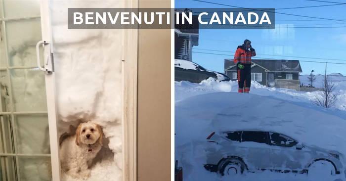 40 immagini mostrano come i canadesi affrontano la peggiore bufera di neve da 50 anni