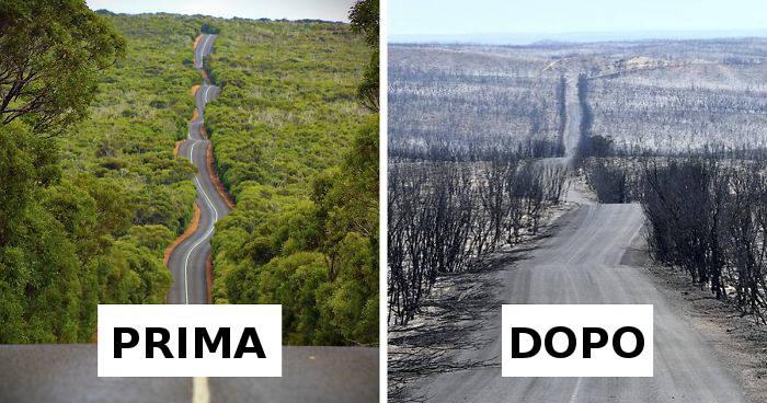 21 foto prima e dopo dell'Australia mostrano tutta la devastazione degli incendi