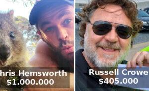 16 celebrità si mobilitano e donano ai vigili del fuoco in Australia