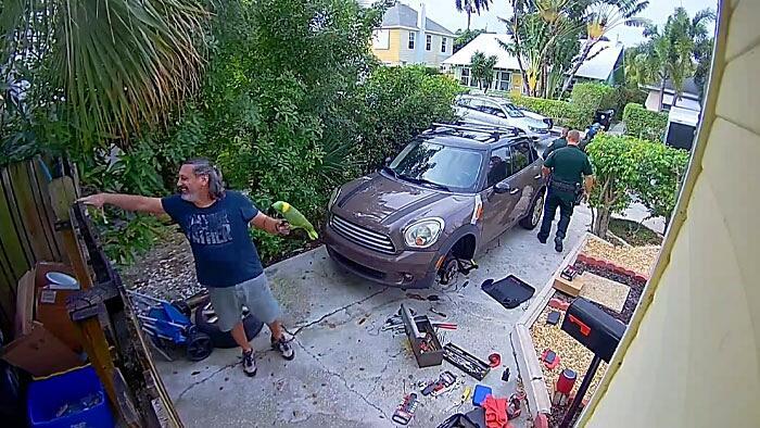 Vicini chiamano polizia perché pappagallo chiede aiuto