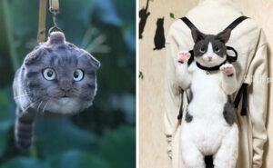 Artista giapponese crea borse a forma di gatto