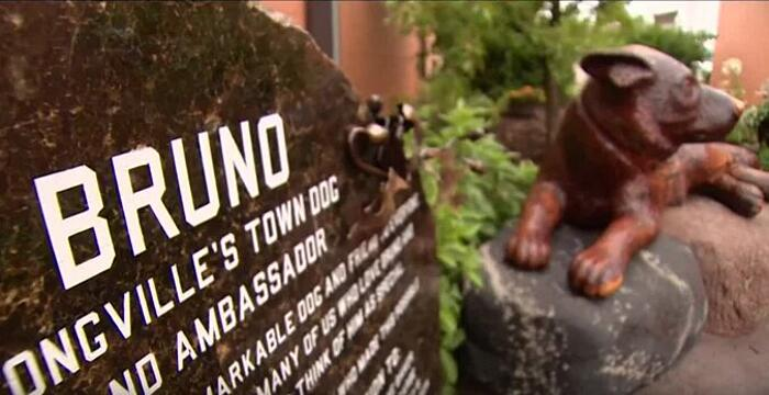 Bruno cane ambasciatore Longville Minnesota