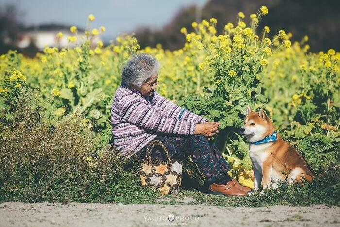 Il fotografo Yasuto cattura il legame tra la nonna e il suo cane in 30 toccanti immagini