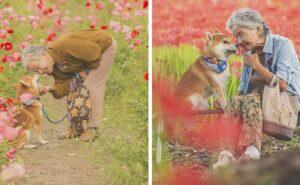 Fotografo cattura il legame tra la nonna e il suo cane in 30 toccanti immagini