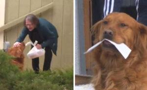 Donna anziana in isolamento con problemi respiratori riceve la spesa dal cane del suo vicino