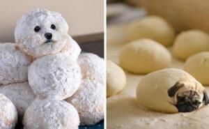 Account Instagram raccoglie immagini divertenti di cani photoshoppati nel cibo