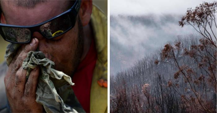 Per la prima volta dopo 240 giorni, non ci sono incendi boschivi in Australia NSW
