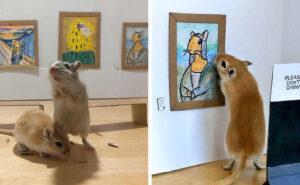 Coppia in quarantena crea un museo in miniatura per due adorabili gerbilli