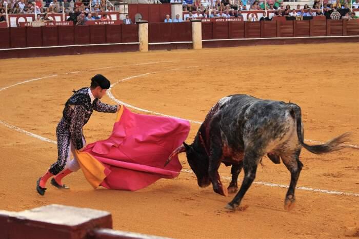 Finito il lockdown, la corrida in Spagna riprende ma gli spagnoli non ci vanno