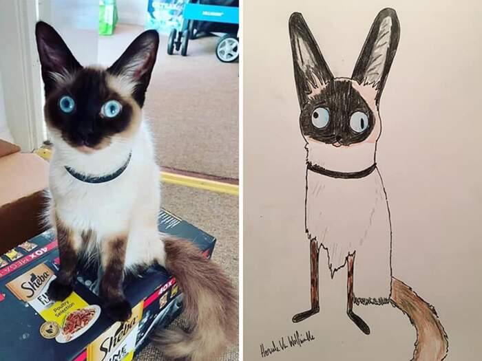 Non ha mai disegnato e fa orribili ritratti di animali per beneficenza raccogliendo € 18.000