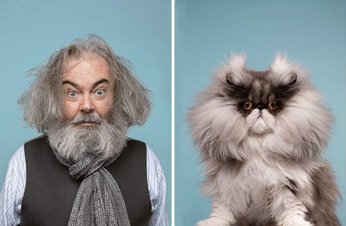Fotografo trova i sosia di 17 persone, ma sono gatti