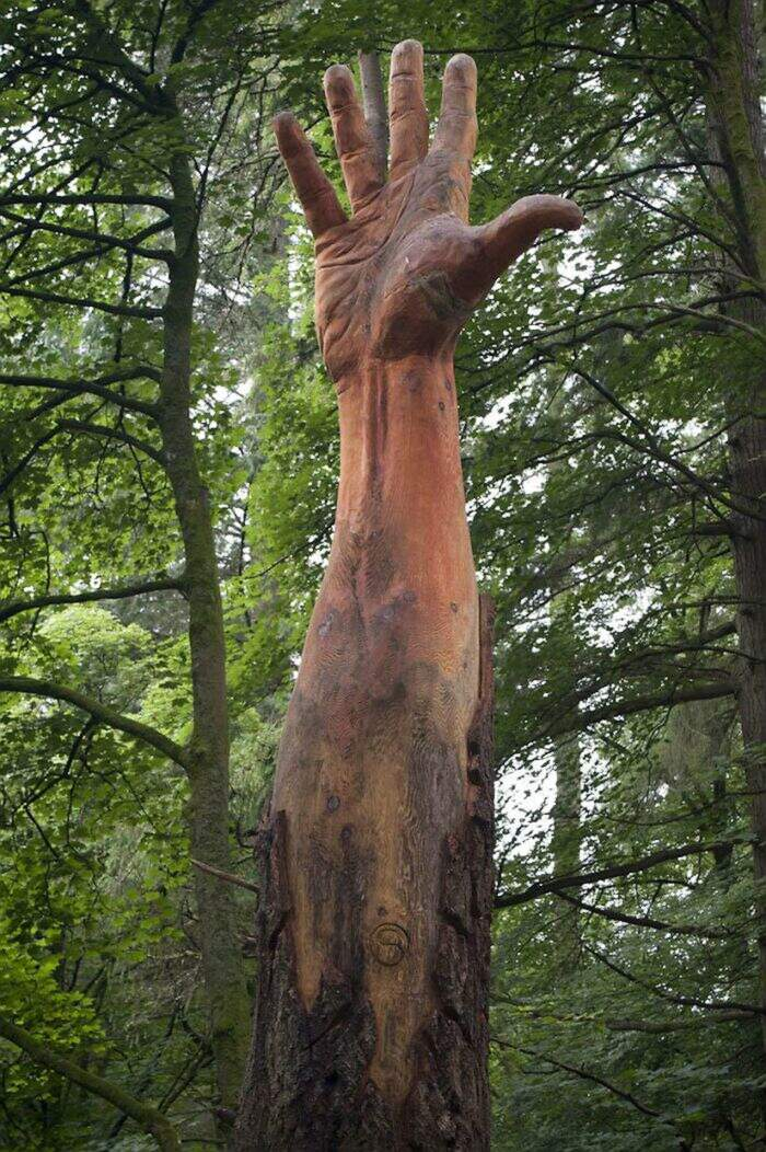 Artista usa una motosega per trasformare un albero spezzato in una mano tesa verso il cielo