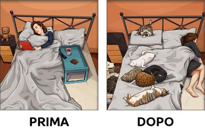 22 vignette mostrano come cambia la vita dopo aver preso un cane o un gatto