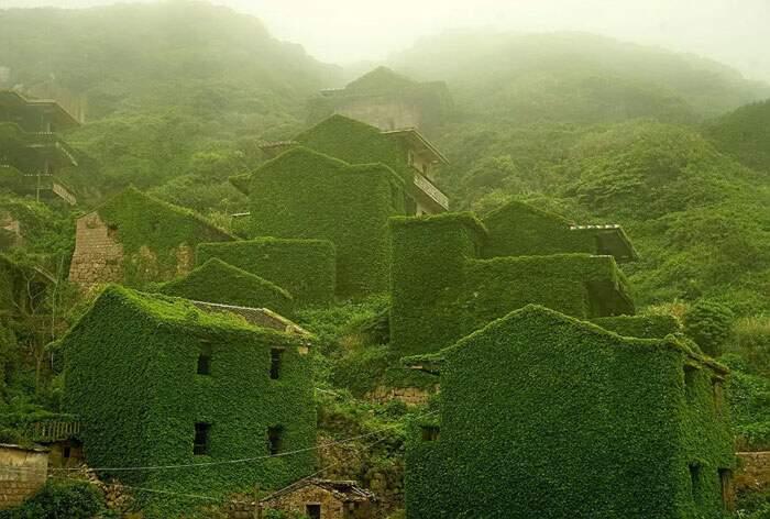 53 volte in cui la natura si è ripresa i suoi spazi (nuove foto)